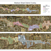 Madison District OVerlay Map Poster